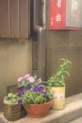 植木鉢アート